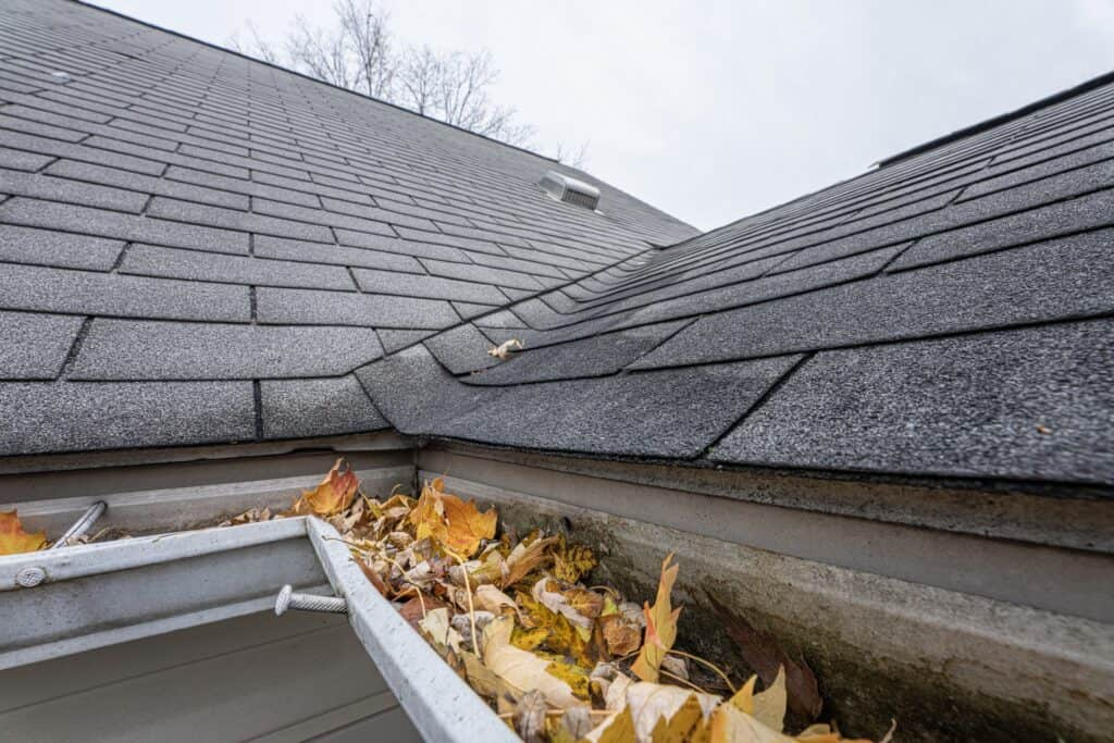 Example of roof damage that a homeowners insurance policy won't cover - home with clogged gutters and poor maintenance