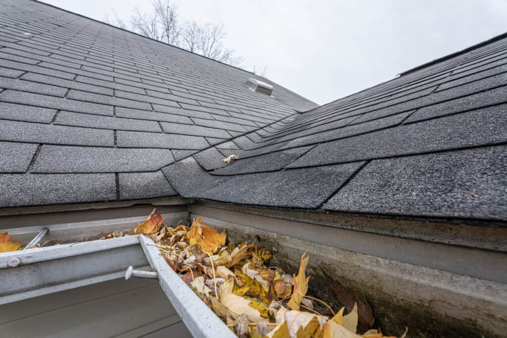 roof gutters clogged with leaves